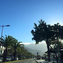 Fenómeno esta manhã, no Funchal (FotoGaleria)