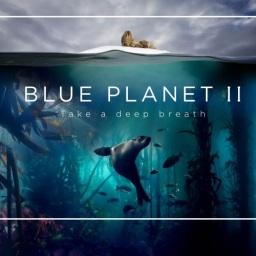 """""""Blue Planet"""" – Estreia na RTP1"""