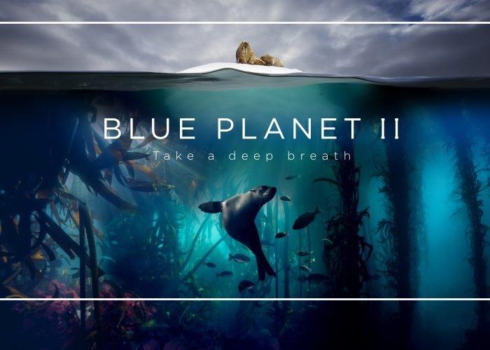 """""""Blue Planet"""" – Estreia naRTP1"""