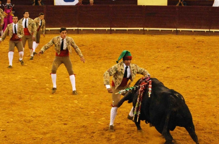 Tourada: a RTP vai transmitir mais uma tourada estemês