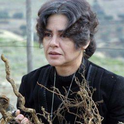 Filomena Gonçalves regressa ao teatro, 18 anos depois