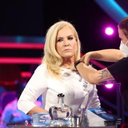 Exclusivo: depois do BB, Cristina quer Teresa Guilherme numa telenovela