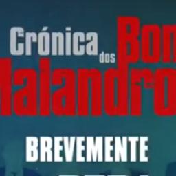 """Brevemente na RTP1 – """"Crónica dos Bons Malandros"""""""