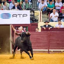 Nuno Artur Silva manda RTP acabar com Touradas e com a RTP Memória